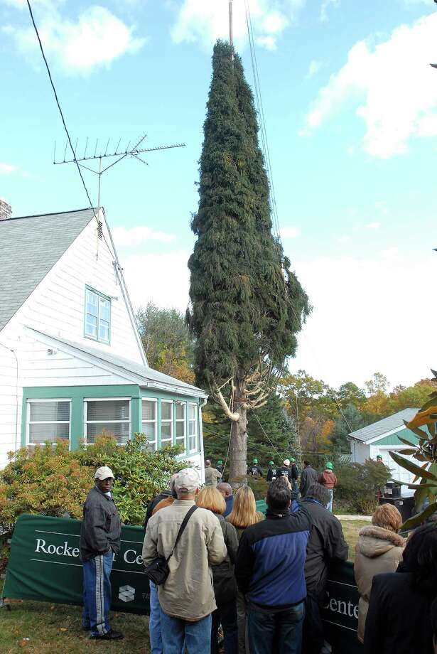 11/07/07 Photo-Peter Casolino Cas071107 Shelton--Large crowds of onlookers watch as crews cut the Rockefeller Christmas Tree at the home at 67 Soundview Avenue in Shelton. This is the 75th anniversary tree that will grace New York City for the Holidays. . Photo-Peter Casolino