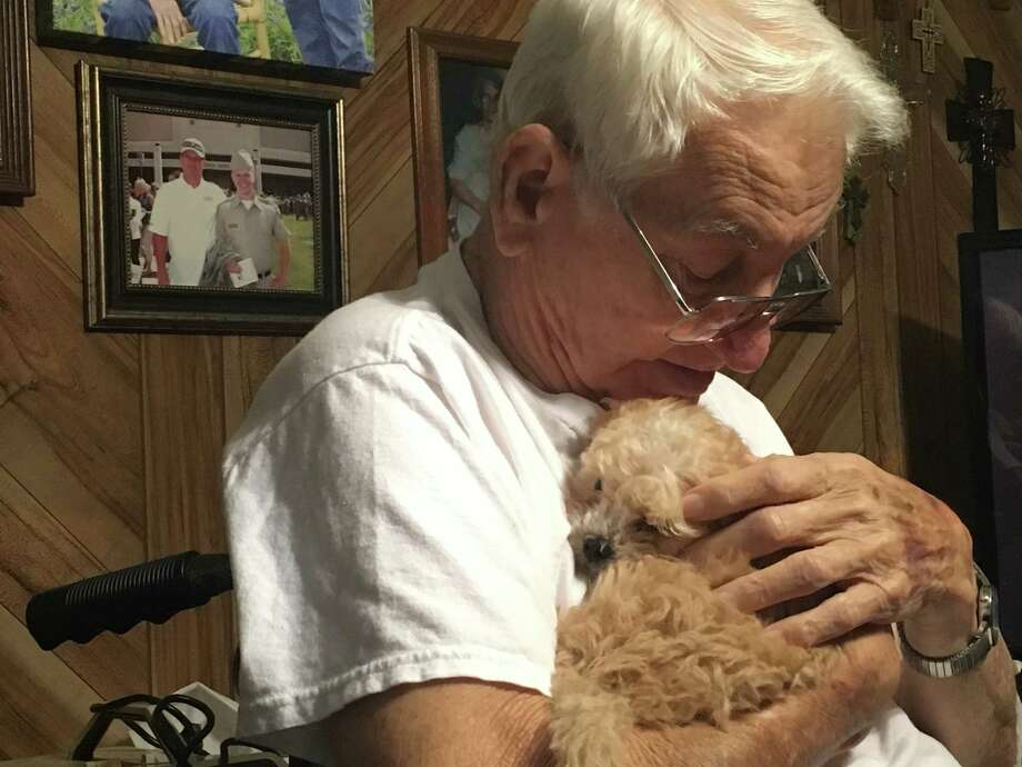 Chief is a 7-week-old Shih Tzu/Toy Poodle who joined the Arceneaux family on Dec. 28. Paul Arceneaux, 83, of Nederland had his left leg amputated in 2017 and was sincerely helped by their Chihuahua Gabby, who passed away on Christmas Day. Photo: Morgan Gstalter/Beaumont Enterprise Photo: Photo: Morgan Gstalter/Beaumont Enterprise