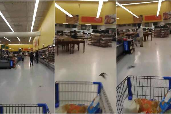 A Texas man was doing some dinner shopping at a Walmart in Alvin when he found himself surrounded by bats.