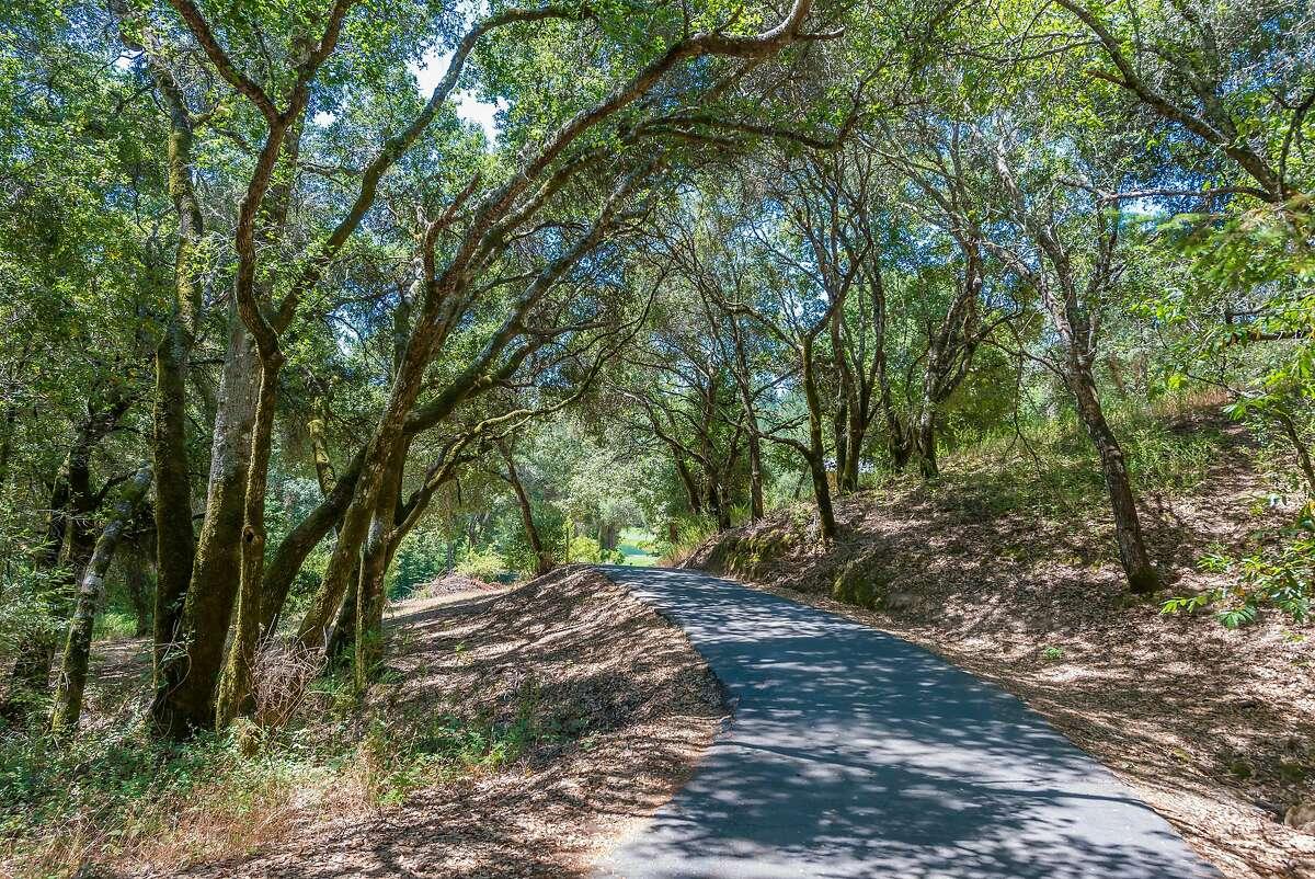 Mature trees shade the road leading to the Sebastopol home.�