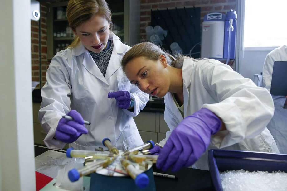 Rice University junior Anna Knochel (left) and doctoral student Lauren Howe-Kerr test coral samples last month. The samples were taken from the Gulf of Mexico to study the health of the reef systems after the influx of freshwater from Hurricane Harvey. Photo: Michael Ciaglo /Houston Chronicle / Michael Ciaglo