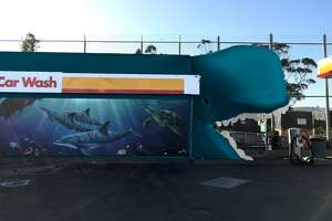 "The owner of a San Bruno gas station hopes to append a ""high-quality and professionally created whale mouth"" to the exit of the station's car wash."
