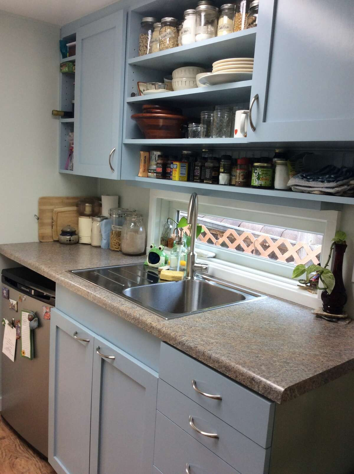 The kitchen does have some counter space and a dishwasher, plus...