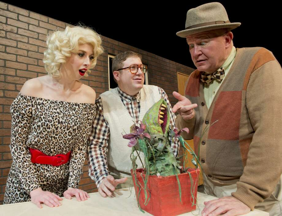 Caitlin Miles as Audrey, Danny Anderson as Seymour and Drew Anderson as Mr. Mushnik, in MCT's production of Little Shop of Horrors. 01/09/18 Tim Fischer/Reporter-Telegram Photo: Tim Fischer/Midland Reporter-Telegram