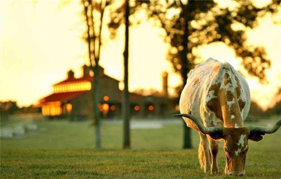 million dollar ranches on the market in texas houston chronicle