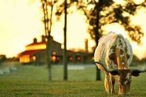 416 SE County Road3390 in Winnsboro     List price : $12 million   Acres : 427+