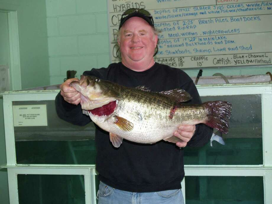This ShareLunker came out of Lake Conroe on February 5, 2006 and weighed 14.80 pounds. It was caught by Harry Durham from Houston. Photo: Larry J. LeBlanc