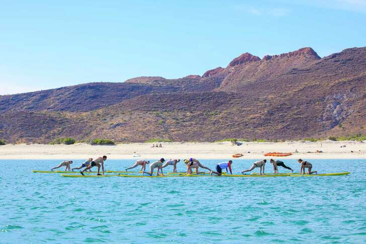 Passengers on Lindblad Expeditions'  Base Camp Baja  cruise practice yoga on stand-up paddleboards.