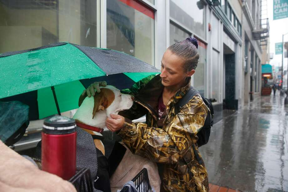 Amber Fina, who is homeless, checks on her dog, Ganja, as they stand on Grove Street before taking shelter from the rain in Burger King on Monday. This year San Francisco will get $41 million from the federal government for programs to serve the homeless. Photo: Lea Suzuki, The Chronicle