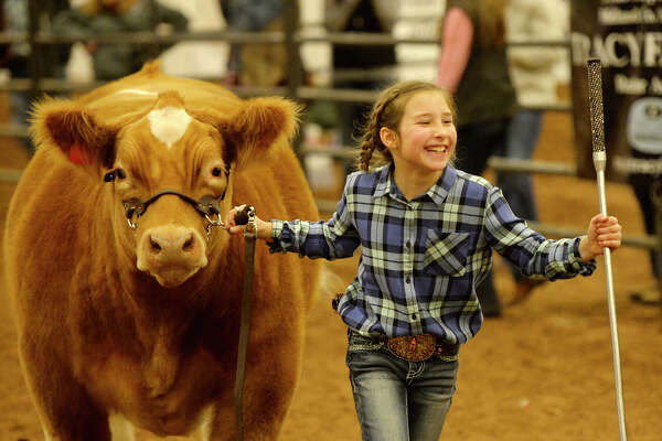 """Kimbre Lambert reacts as her steer """"Big Dawg"""" is announced reserve champion during the Midland County Livestock Association annual show Jan. 12, 2018. James Durbin/Reporter-Telegram"""
