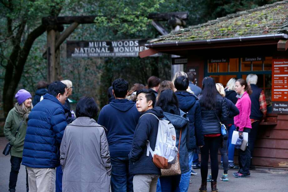 Visitors will pay to park at Muir Woods starting Tuesday, when the National Park Service begins requiring reservations at lots and on shuttle buses. Photo: Michael Macor, The Chronicle