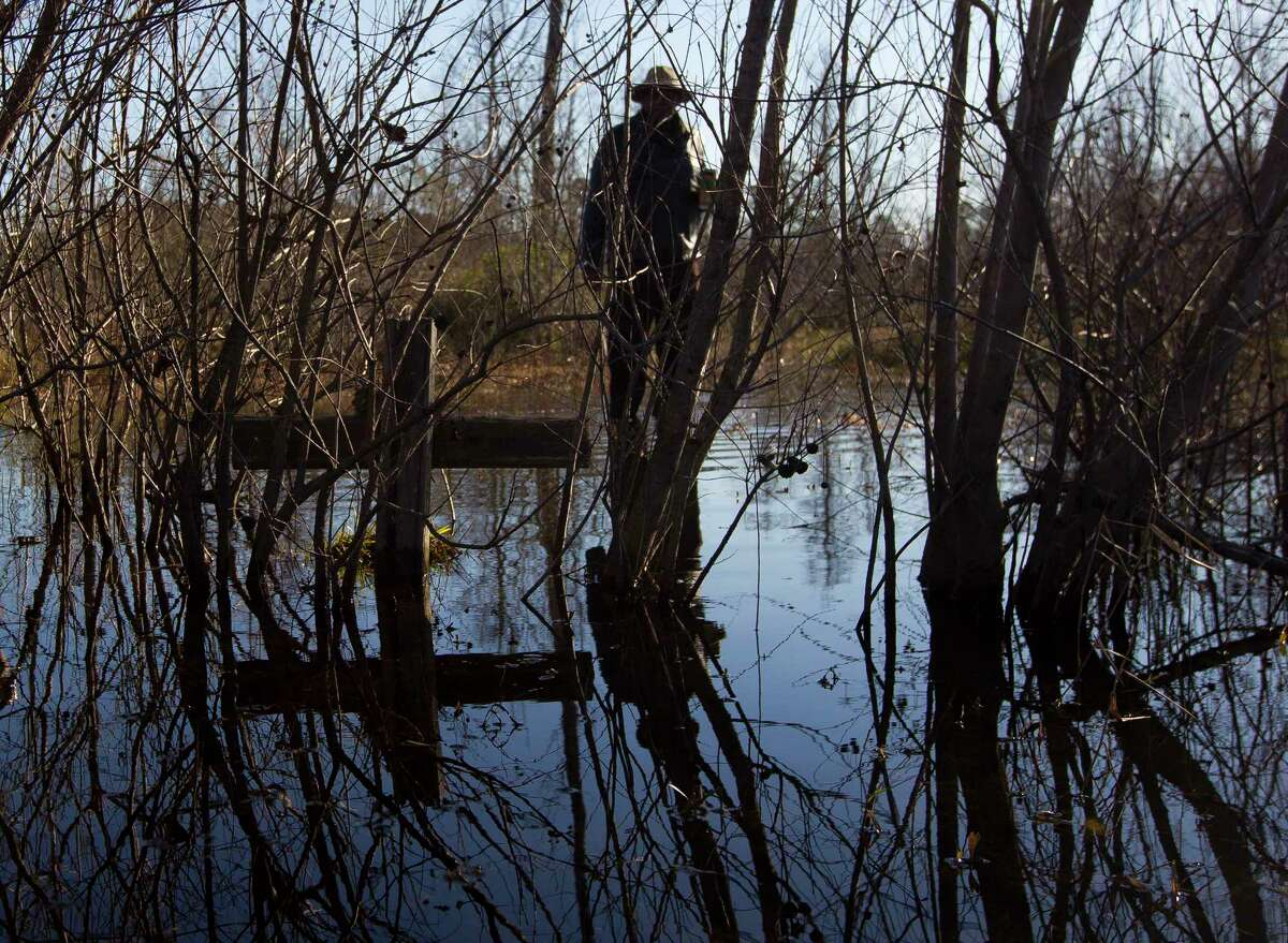 Elijah Easley, chairman of the Tamina Cemetery Project Community Development Corporation, points out a handmade cross partially submerged by water as he walks through the flooded Sweet Rest Cemetery, Saturday, Jan. 13, 2018, in the historic Tamina community. The 12-acre cemetery is the resting place for approximately 261 members of the founding Montgomery County community founded by freed slaves near The Woodlands.