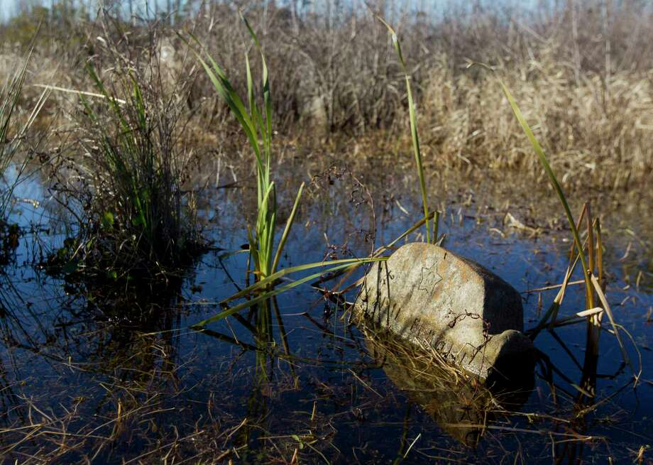 A headstone is seen partially submerged by water in Sweet Rest Cemetery, Saturday, Jan. 13, 2018, in the historic Tamina community. The 12-acre cemetery is the resting place for approximately 261 members of the founding Montgomery County community founded by freed slaves near The Woodlands. Photo: Jason Fochtman, Staff Photographer / © 2018 Houston Chronicle