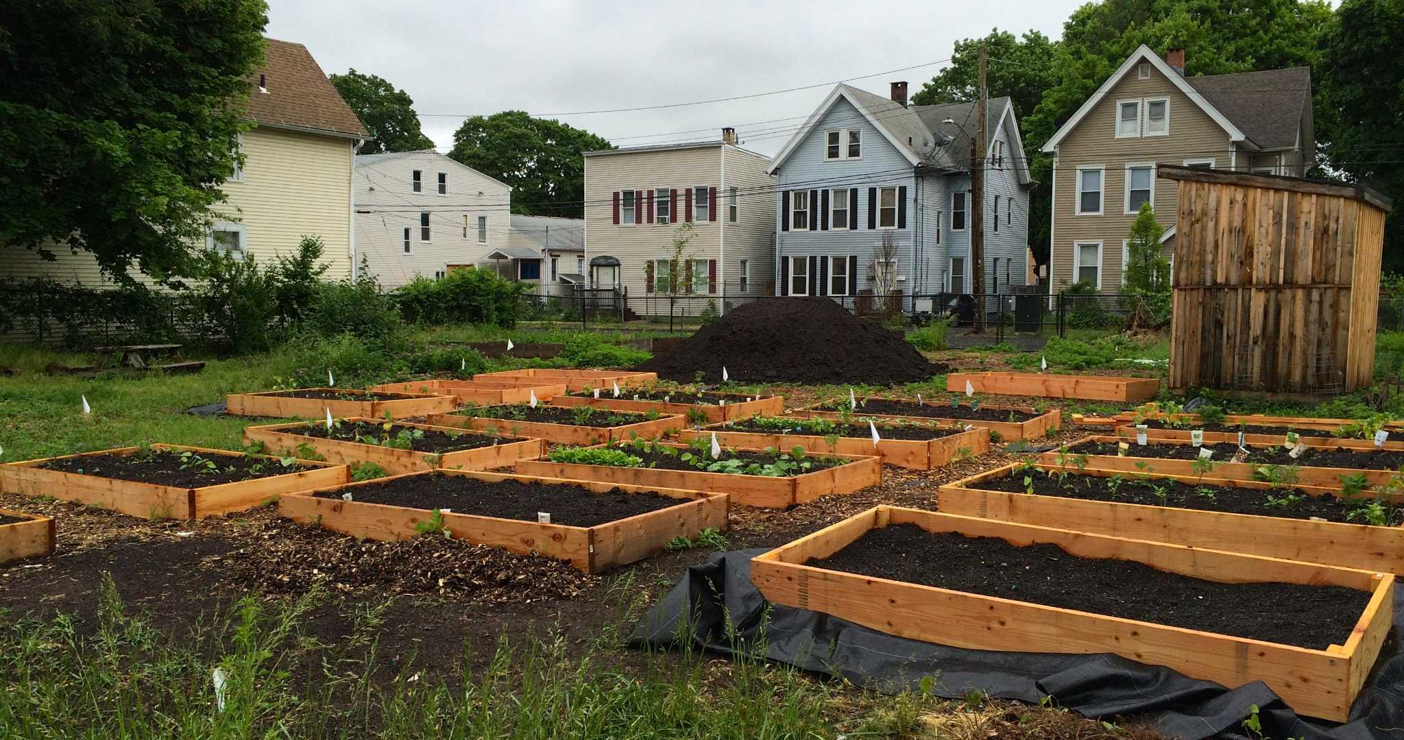 New Haven Farms to expand healthful garden program - New Haven Register