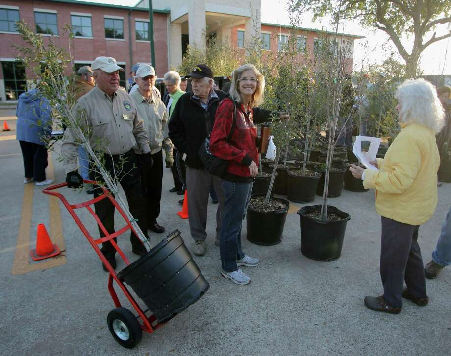 Keep Friendswood Beautiful's annual tree giveaway will be at 8 a.m. Saturday, Jan. 20 at Friendswood City Hall. Photo: Kar B Hlava / Houston Chronicle / Internal