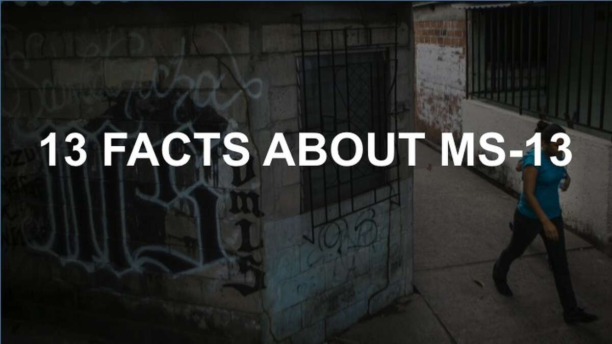 MS-13 is one of the most feared and brutal gangs in the world, and its members have been convicted of crimes all across the Western hemisphere.