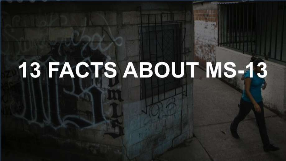 MS-13 is one of the most feared and brutal gangs in the world, and its members have been convicted of crimes all across the Western hemisphere. Photo: FILE