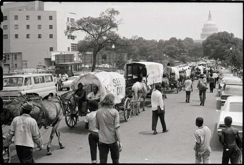 (Original Caption) 6/27/1968-Washington, D.C.: The mule train that was a symbol of the Poor People's Campaign heads toward the Capitol after finally crossing the river into Washington June 25th. The mules had been kept across the river from the city during the