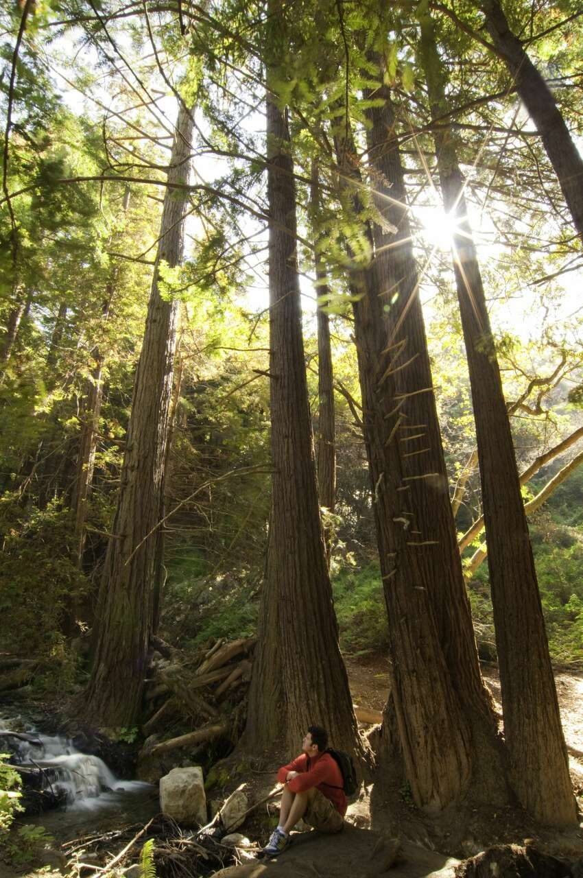 20 places to go to in California in 2018 Big Sur After a series of potent storms in the 2016-2017 rainy season caused multiple landslides and damaged a Highway 1 bridge, Big Sur and its dramatic coastline became a difficult destination to reach and many of its parks closed. But now the Pfeiffer Canyon Bridge, the main artery into the area, has been rebuilt and visitors again have easy access to everything from