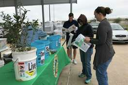 Keep Pearland Beautiful will give away saplings to Pearland residents on Jan. 27 at Stella Roberts Recycling Center, 5800 Magnolia St.