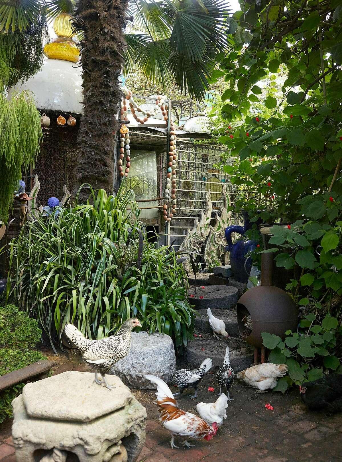 The Marcia Donahue garden.