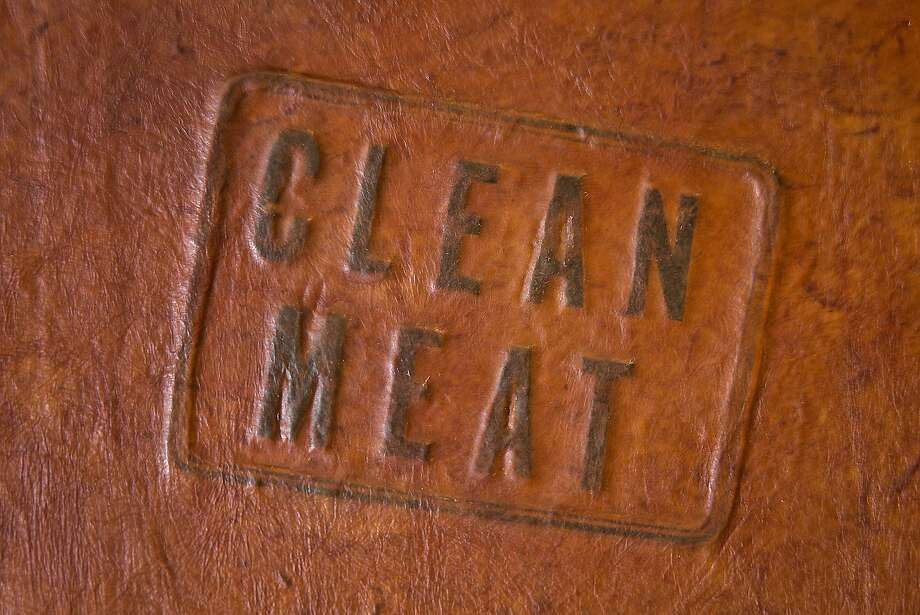 """Paul Shapiro, author of """"Clean Meat,"""" a book about cultured meat that came out in January 2, has worked with San Leandro-based GelTor to produce one leather-bound copy of his book. GelTor, which manufactures collagen for cosmetics from yeast cells, was working on producing cultured leather completely in secret. Photo: Eric Day"""