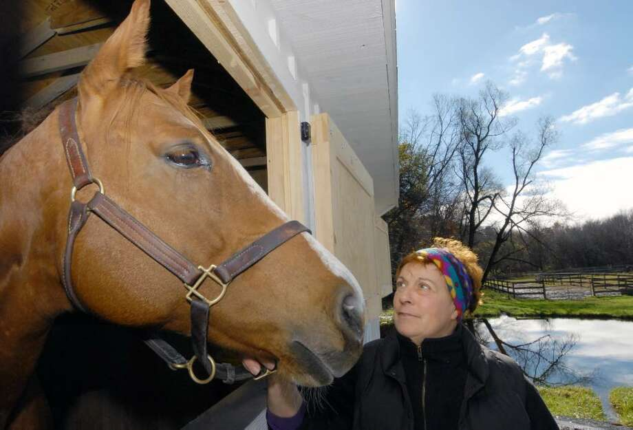 Barb Sullivan with a mare named Chrome Phone on her Nassau farm ,a horse who was rescued from the Ernie Paragallo farm in Climax. (Michael P. Farrell/ Times Union) Photo: MICHAEL P. FARRELL / 00006130A