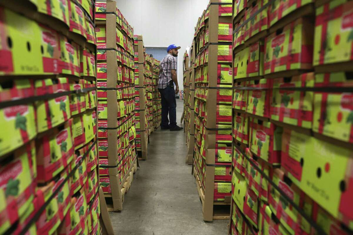 John Sandoval labels boxes of cucumbers from Mexico at the Keystone Cold Storage and Distribution in Pharr, Texas, Tuesday, Jan. 5, 2016. The port at Pharr is seeing an increase of produce from Mexico.
