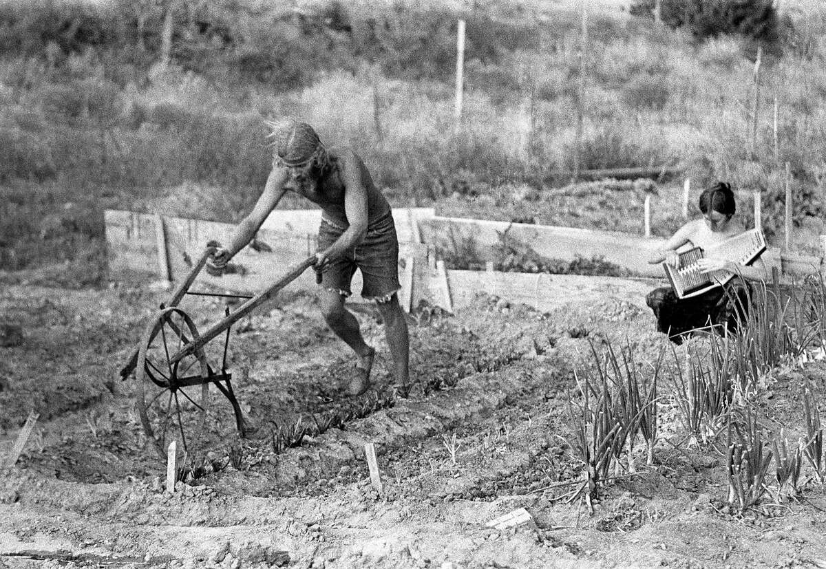 A man plows his field while a woman plays an autoharp in 1969 in New Mexico.