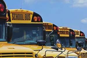Rows of School Buses