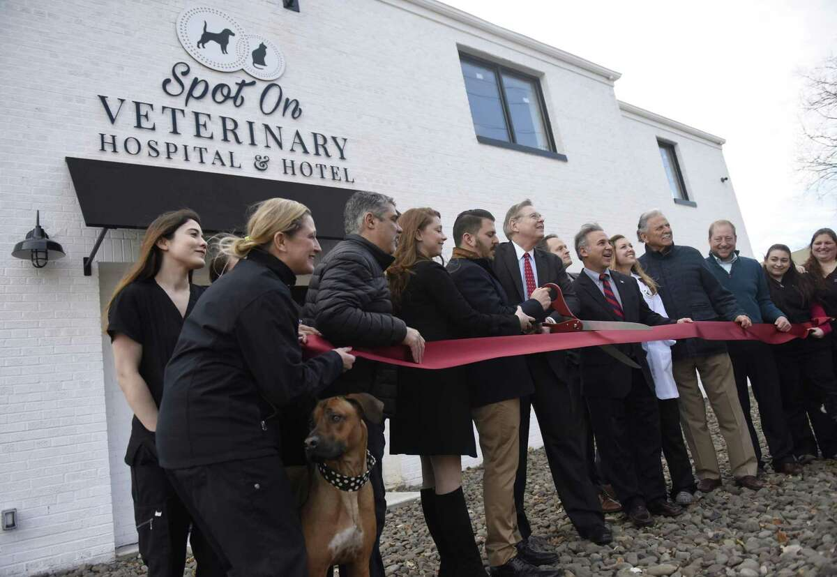 Staff and local leaders participate in the ribbon-cutting at Spot On Veterinary Hospital & Hotel in Stamford, Conn. Wednesday, Dec. 20, 2017. The new 16,000 sq. ft. facility offers veterinary services, veterinary house calls, premium boarding, grooming, lessons, daycare, alternative medicine and an adoption center.