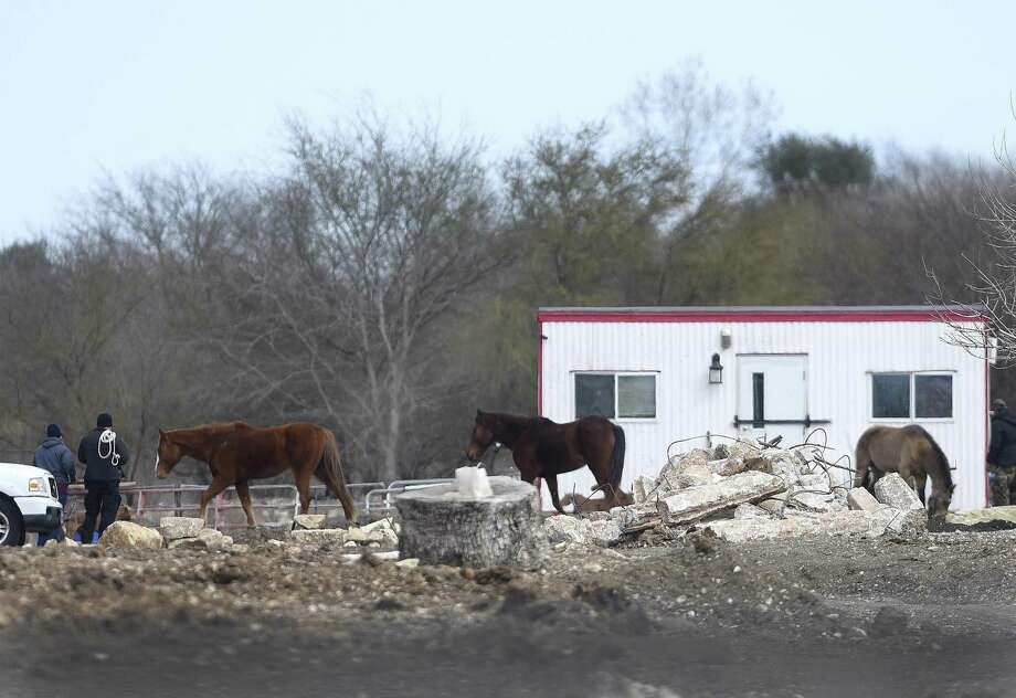Animal Care Services personnel look over a property in the 12500 block of Old O'Connor Road where horses and a donkey were seized Wednesday after a two-week investigation. Photo: Billy Calzada /San Antonio Express-News / San Antonio Express-News