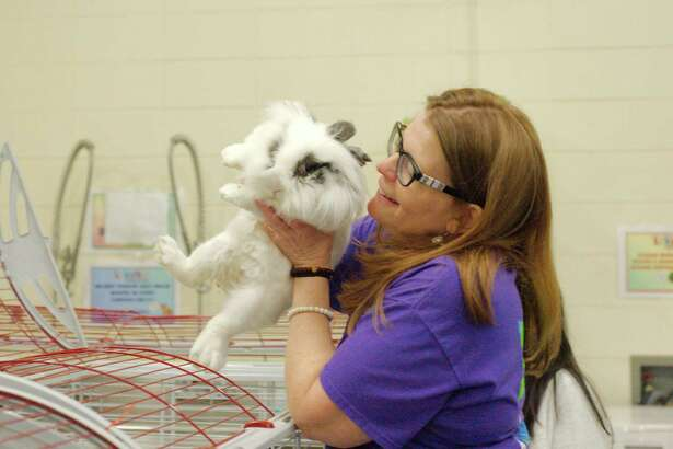 Ande Smith, manager at  Living Materials Center at Seabrook Intermediate School, handles a lionhead rabbit, one of many animals available for teachers to check out for use in classrooms.