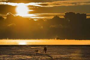 FILE - In this Wednesday, Dec. 27, 2017 file photo, a man walks his dog across the snow-covered beach while a cargo ship sits in the steaming fog of Lake Ontario in Toronto. According to a report released on Thursday, Jan. 18, 2018, U.S. and British scientists calculate that 2017 wasn't the hottest year on record, but close and unusually warm for no El Nino cooking the books. (Frank Gunn/The Canadian Press via AP)