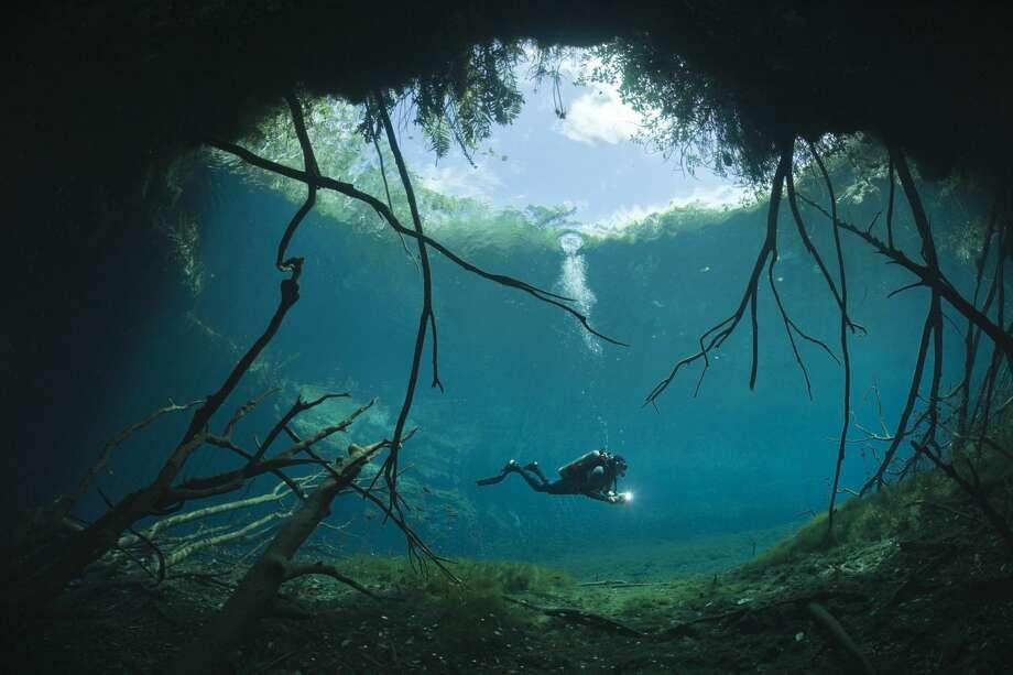 Scuba diver in Car Wash Cenote Aktun Ha, Tulum, Yucatan Peninsula, Mexico. Photo: Ullstein Bild/ullstein Bild Via Getty Images
