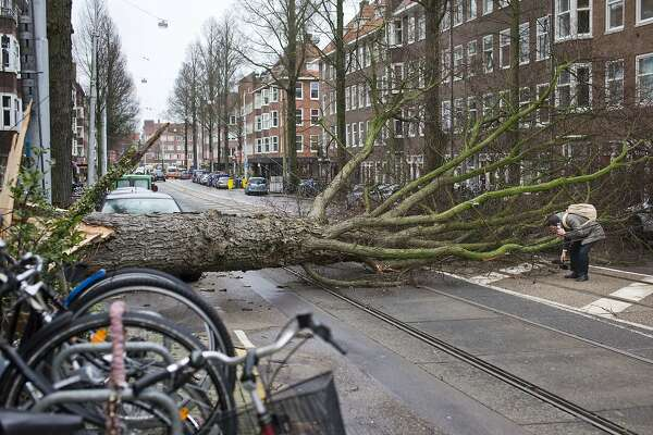 A man who escaped unharmed picks up his gloves after his scooter was hit by a crashing tree uprooted by heavy winds in Amsterdam, Netherlands, Thursday, Jan. 18, 2018. Scores of flights and trains were cancelled in The Netherlands and drivers were warned to stay off the roads as the country took a powerfull hit of a storm which was set to lash large parts of Europe. (AP Photo/Peter Dejong)