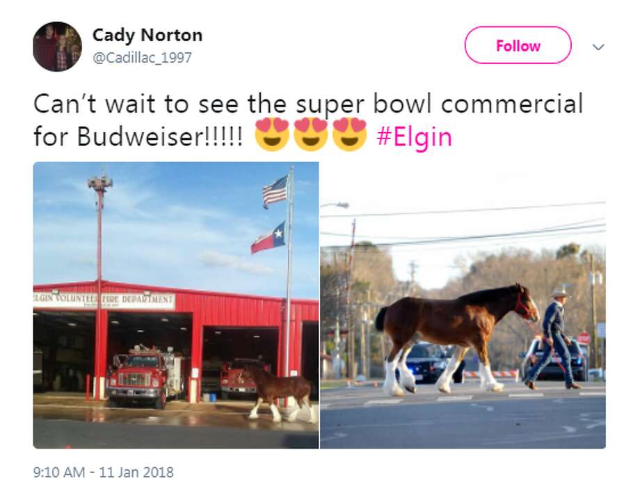 @Cadillac_1997: Can't wait to see the super bowl commercial for Budweiser!!!!! Photo: Facebook.com
