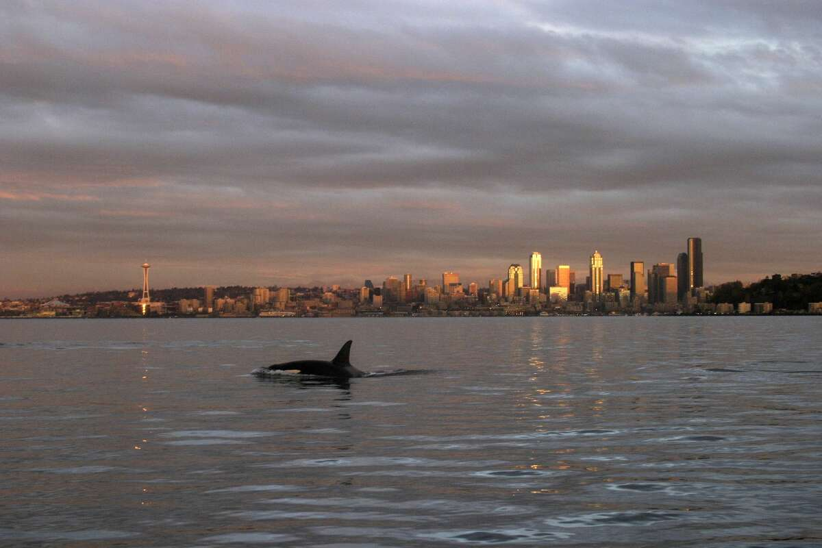Seattle: Salary it takes to be rich: $148,916 Median household income: $74,458