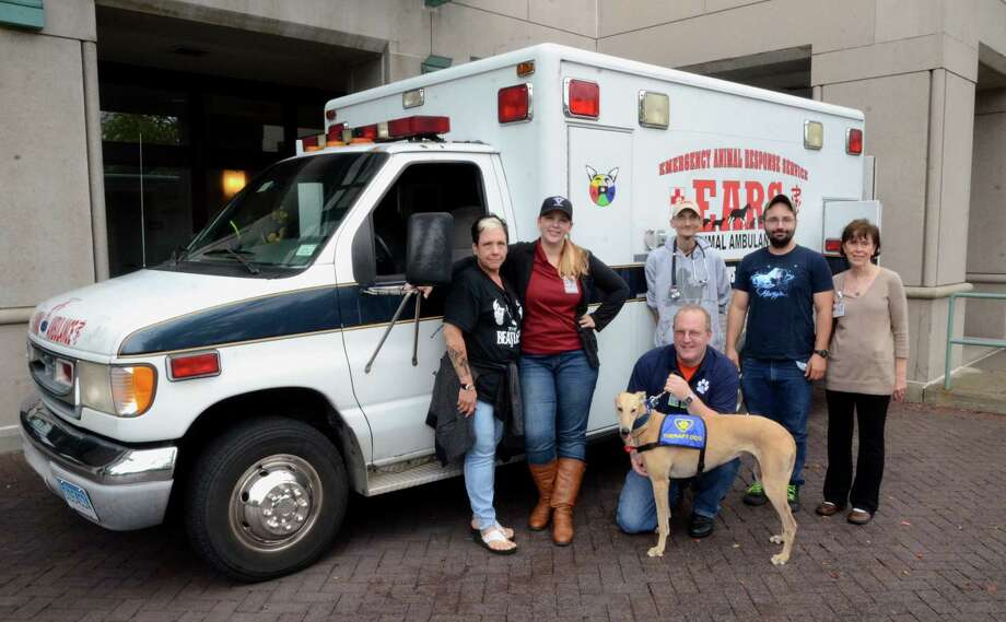 Griffin To Host Pet First Aid Class Connecticut Post
