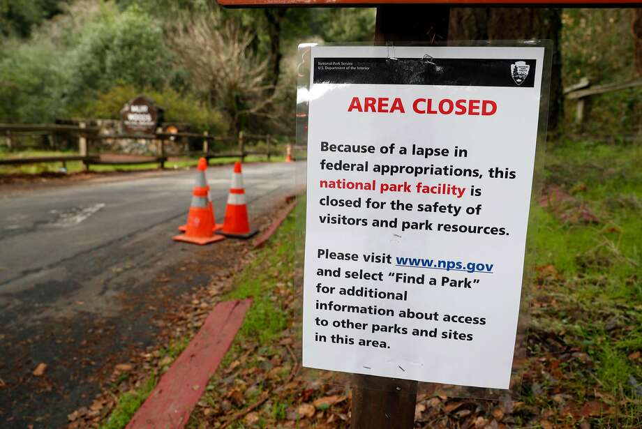 Muir Woods is open to visitors, but its parking lots are closed as a result of the government shutdown. Photo: Scott Strazzante, The Chronicle
