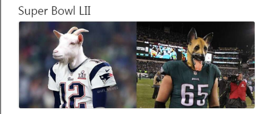 1024x1024 memes celebrate patriots, eagles' huge wins houston chronicle