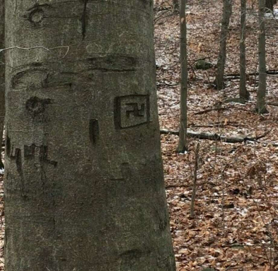 A swastika was carved onto a tree in Topstone Park in Redding. Photo: / Contributed Photo /Redding Police Department