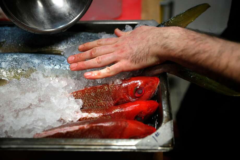 Sous chef Marco Inclan preps red snapper and yellowtail tuna for the refrigerator after the dinner shift at Locanda. Photo: Carlos Avila Gonzalez, The Chronicle