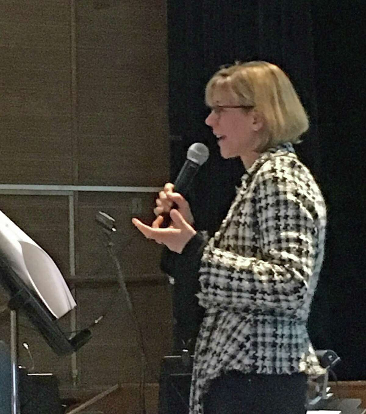 Joanna Swomley addresses Indivisible Greenwich members at a meeting about voting impediments on January 2018.