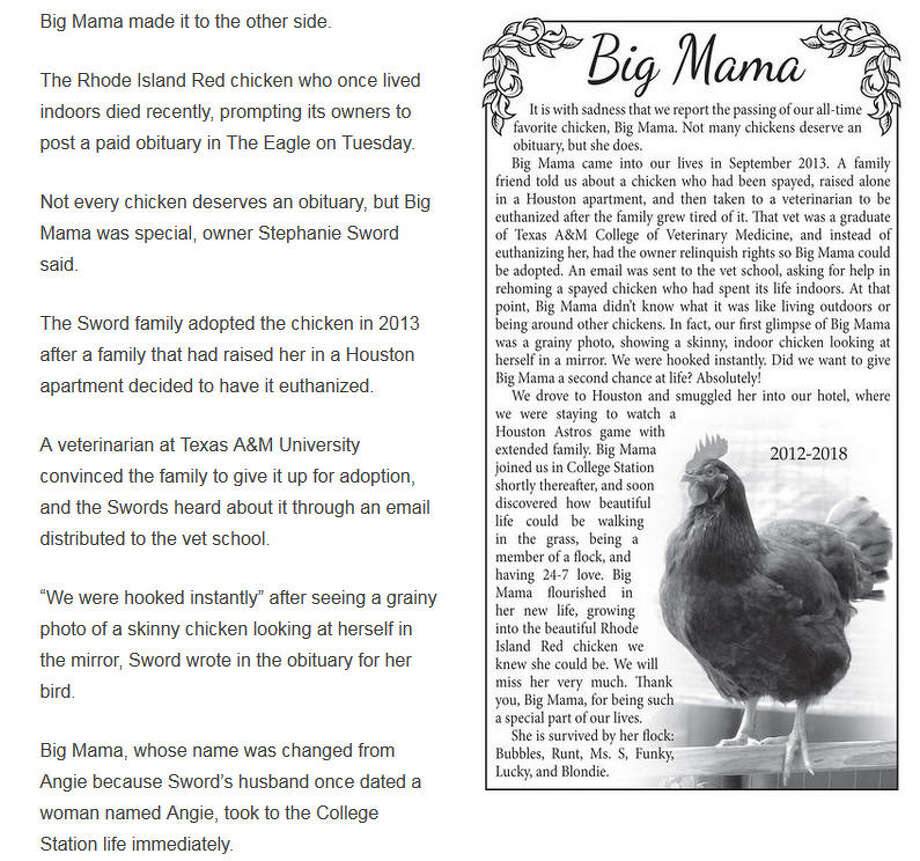 This week, the mourning family of a beloved chicken in the College Station area was honored with a loving obituary in The Eagle, the town's newspaper.  Photo: The Eagle