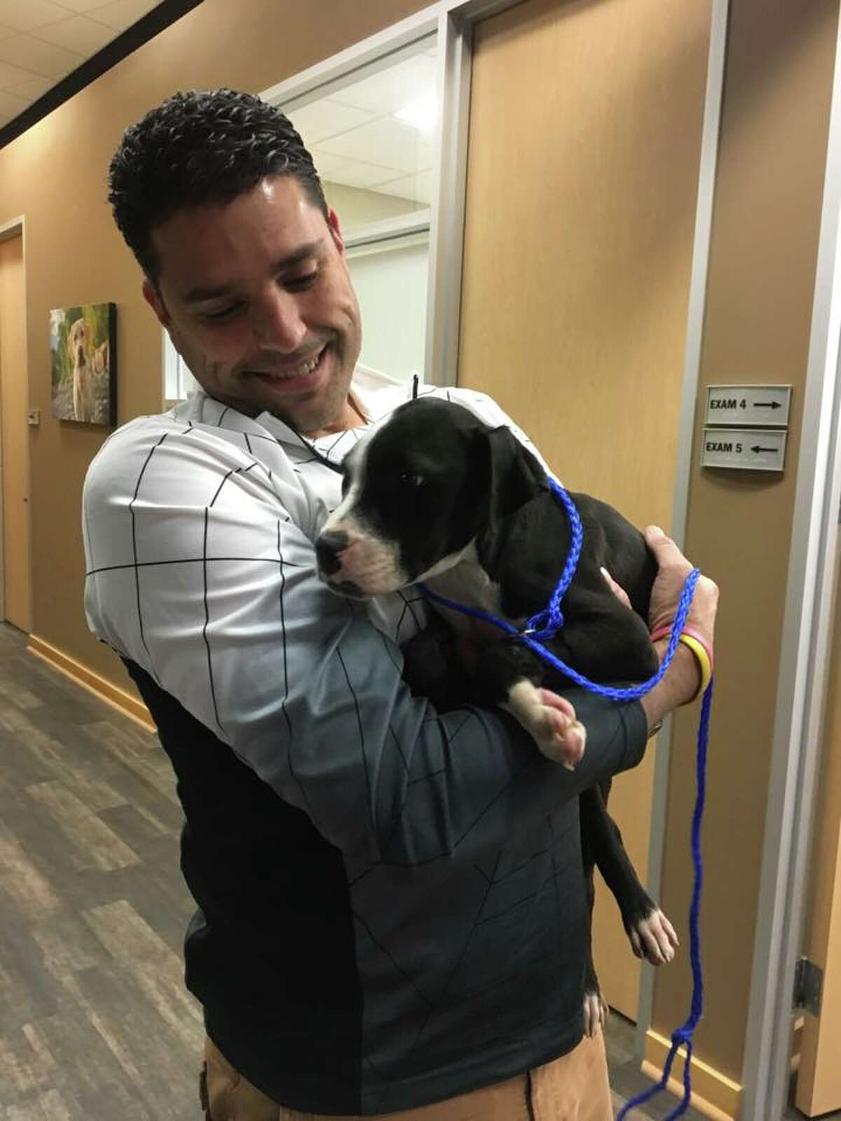 Ricardo, a 3-month-old puppy is undergoing treatment for poisoning after the dog was found bleeding on side of the road off Highway 290 on Jan. 21. Ricardo is expected to recover.