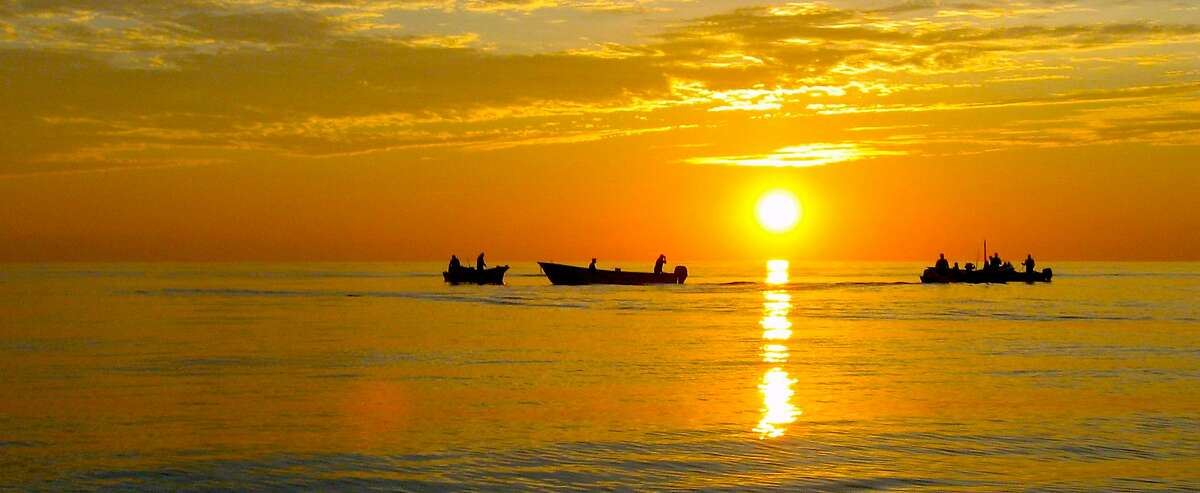 At dawn off of La Pas, fishermen often start the day by catching bait, to be used live for a variety of inshore fish, from marlin to roosterfish