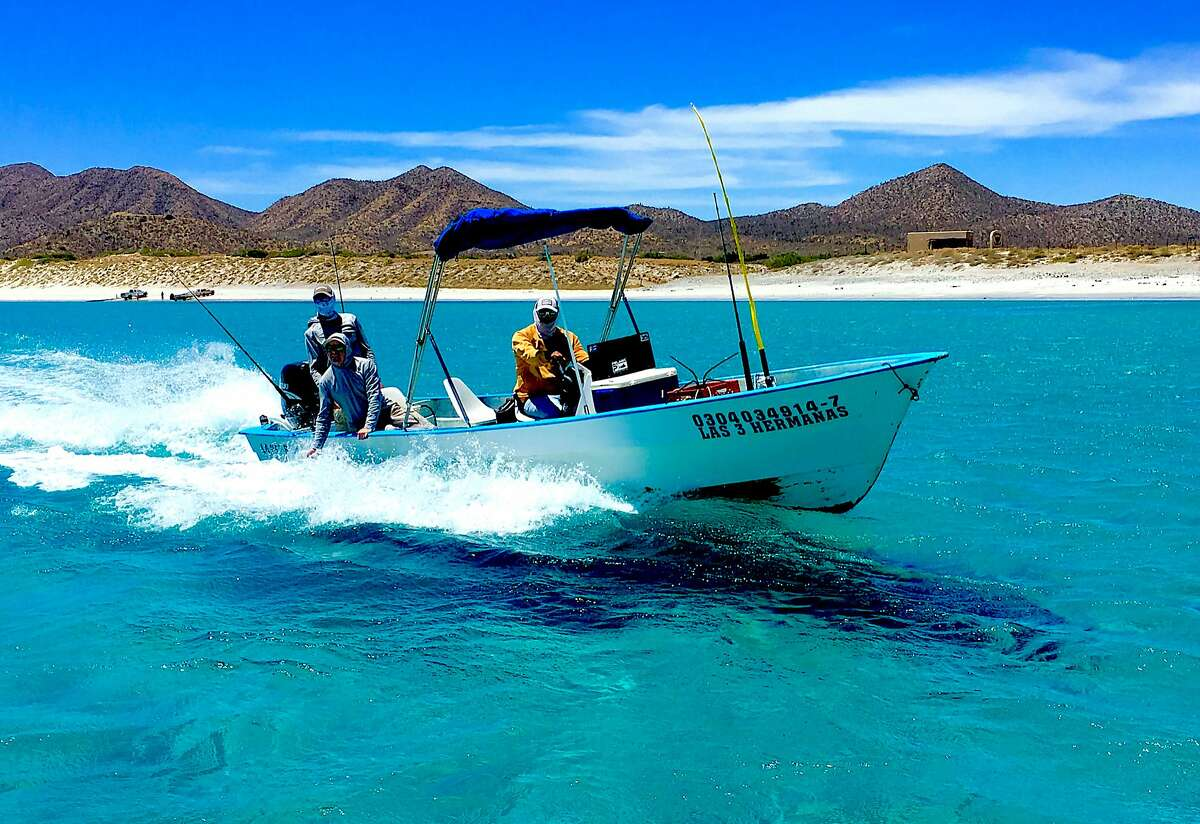 After launch from calm waters from the beach, fishermen in pangas venture into the Sea of Cortez to fish for marlin, yellowtail, roosterfish and many other world-class fish