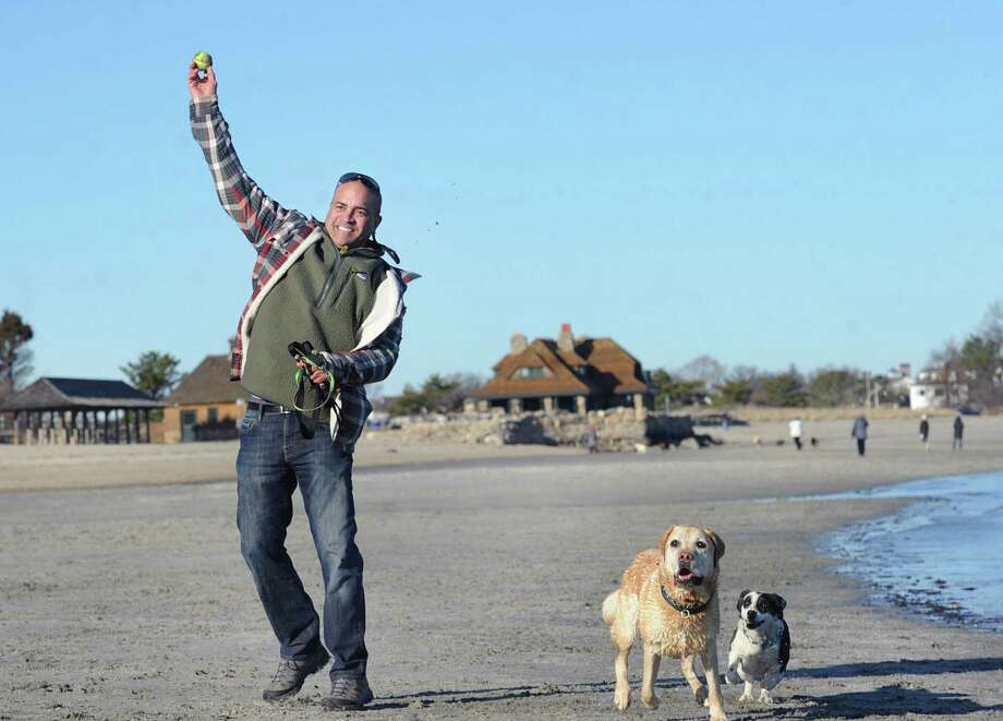Head back to the beach with your dog. Take this chance to 