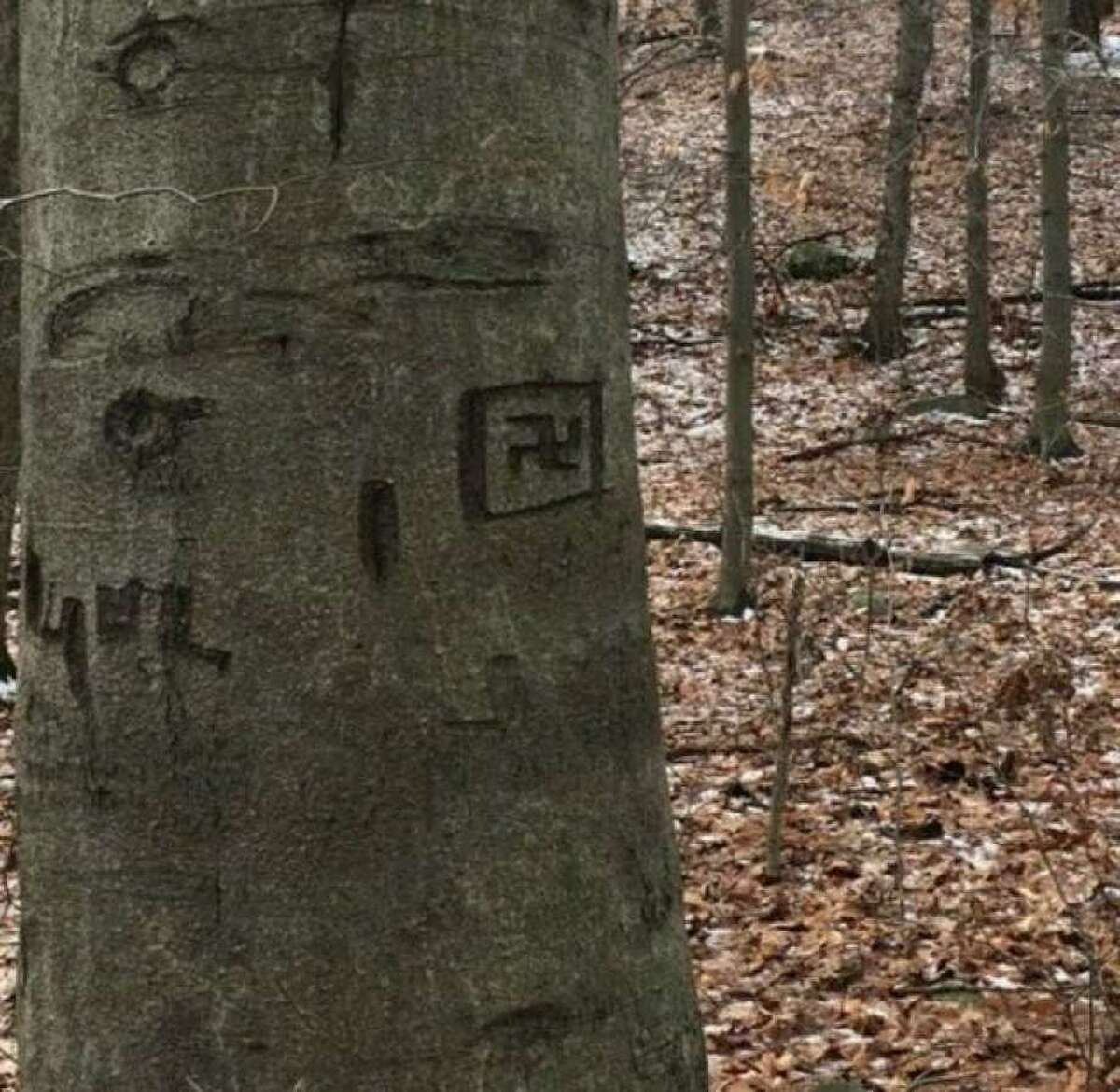 A swastika was carved onto a tree in Topstone Park in Redding.